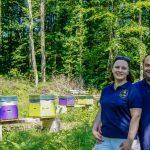 [SONDAGE] Boutique de miel et produits de la ruche